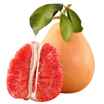 柚子树嫁接视频_单个光斑素材_素材分享